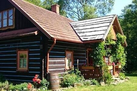 Pietrusza Wola 50 Forest Log Cabin - Krosno - Cabin