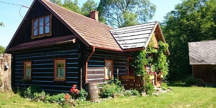 Pietrusza Wola 50 Forest Log Cabin