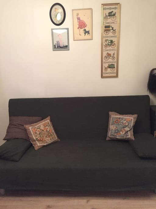 The sleeping sofa, very comfy and can fit two people!
