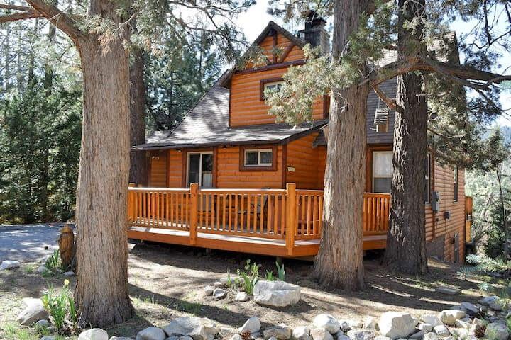 Bear Hug Hideaway Log Cabin Hot Tub Cabins For Rent