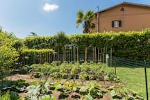 Casale  via  Francigena (golf Club Olgiata)