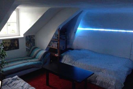 Studio à 30 mins de Paris au milieu d'un parc - Châtenay-Malabry