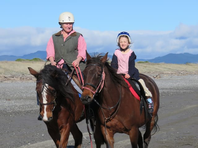 Te Horo by Horseback, Beach Retreat - Te Horo Beach - B&B/民宿/ペンション