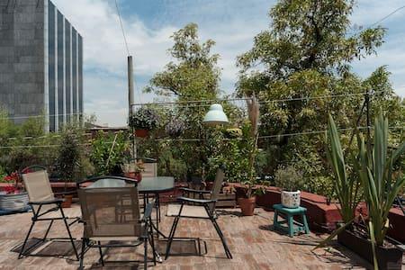 Beautiful Room with Private Terrace - 墨西哥城(Ciudad de México)