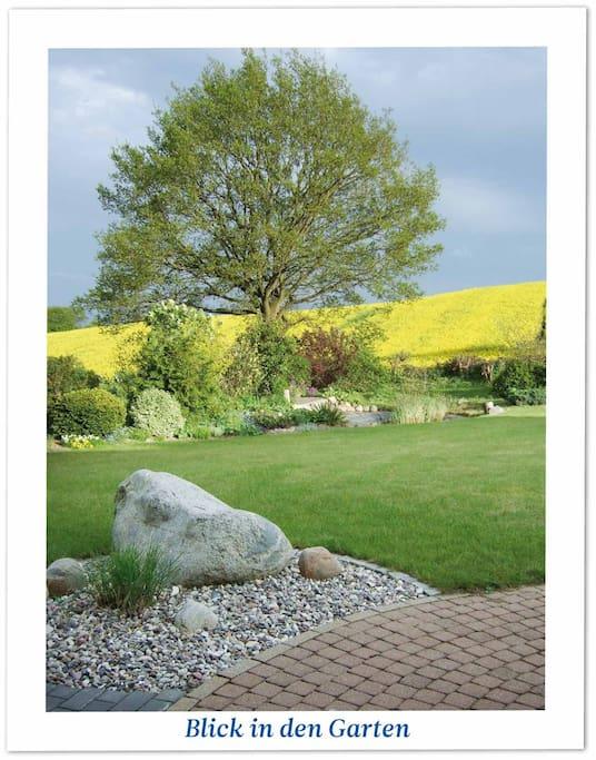 Der Blick von der Terasse in den Garten mit liebevoll angelegten Pflanzenbeeten und einer Teichanlage: nur ein unbebautes Feld begrenzt den Blick.