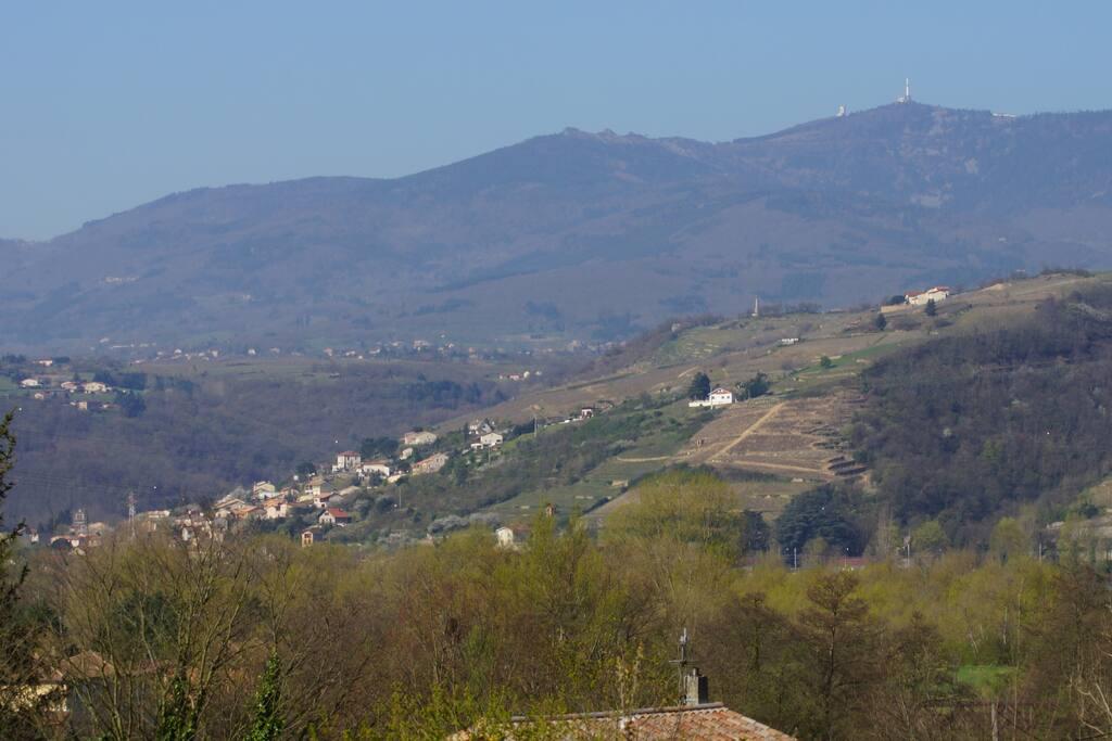 Chambre Camélia avec vue sur le parc naturel du Pilat