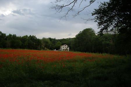"Farm  ""Il Pagliaio del monaco"" - Montagano - Aamiaismajoitus"