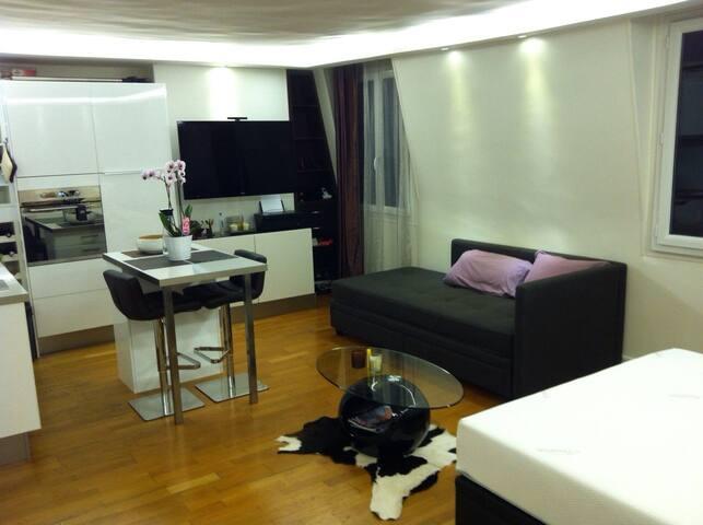 Renovated & Furnished Studio Paris