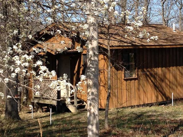 Cabin at yoga retreat center. - Willow Springs