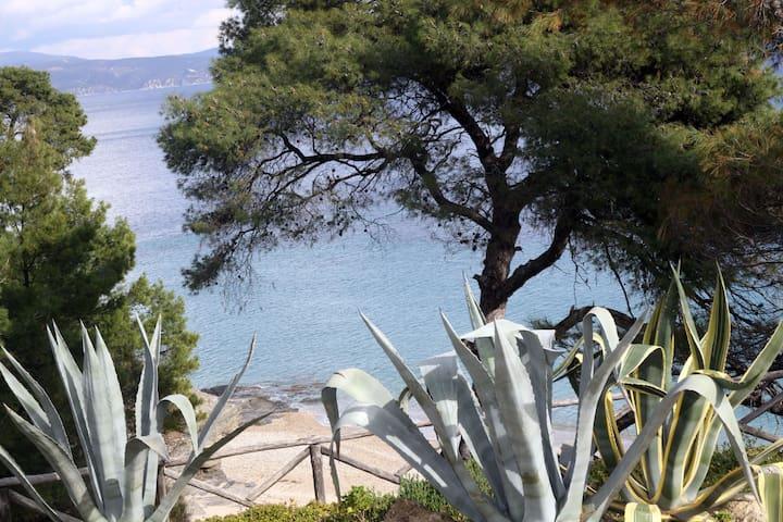 Maria's beach house - Σχοινιά - Departamento