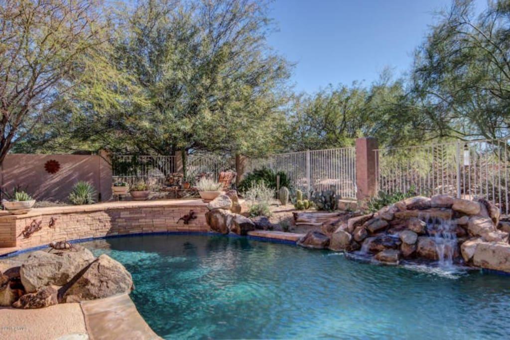 Resort style pool and backyard