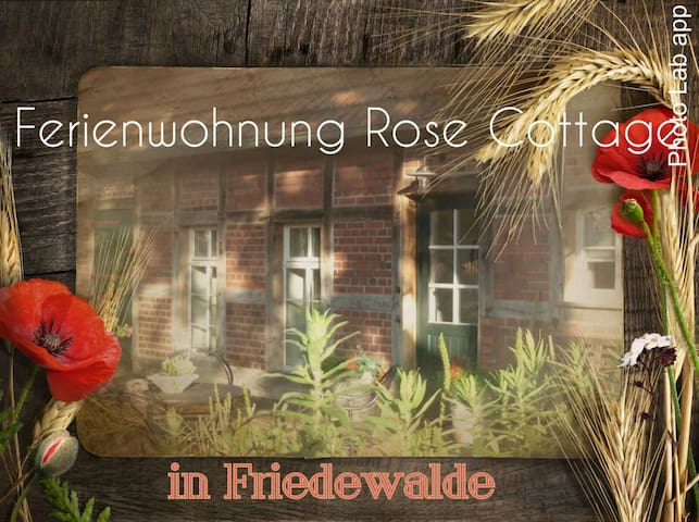 Ferienhaus Rose Cottage - Petershagen - Apartemen