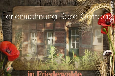 Ferienhaus Rose Cottage - Petershagen