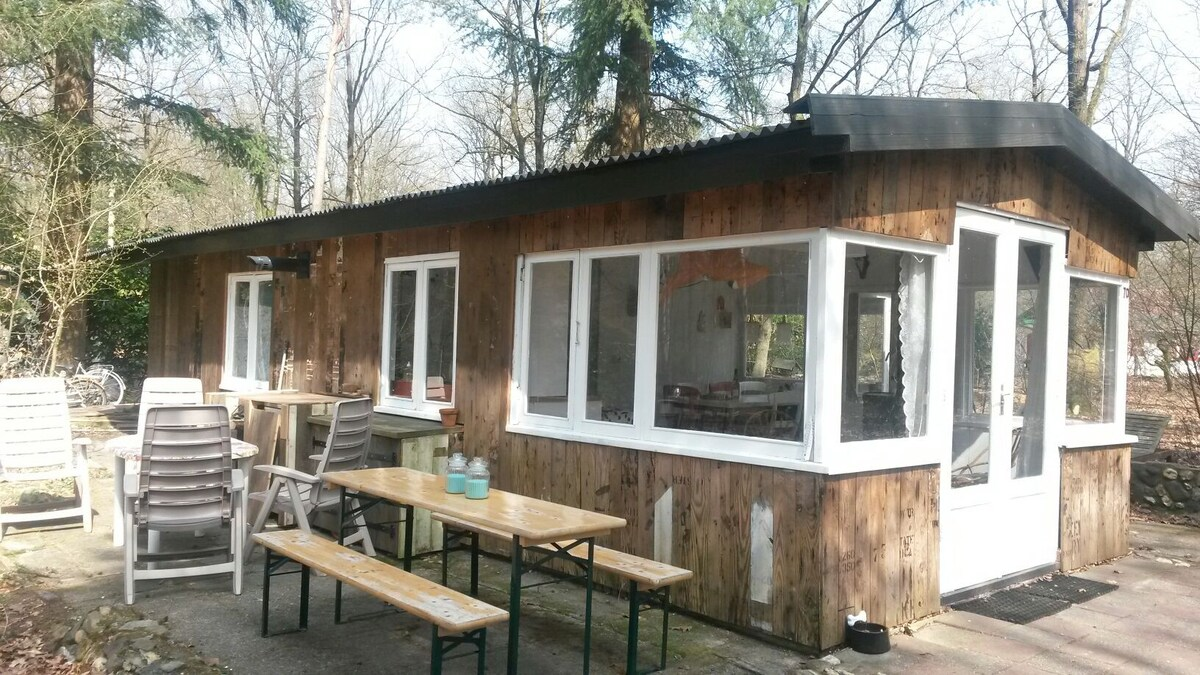 Boshuisje op c&ing in de bossen - Cabins for Rent in Doorn Utrecht Netherlands & Boshuisje op camping in de bossen - Cabins for Rent in Doorn ...