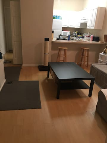First Floor Peaceful Property near UF!