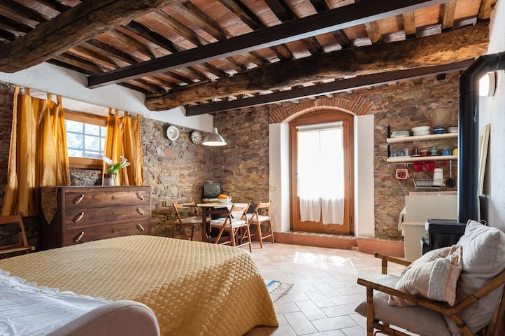 La Corte - Ancient Tuscan Accomodation - Buti - Huoneisto