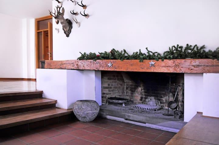 Carnia: wonderful typical flat!!
