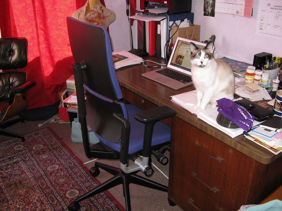 Desk with Steelcase Leap chair; cat not included. :-)