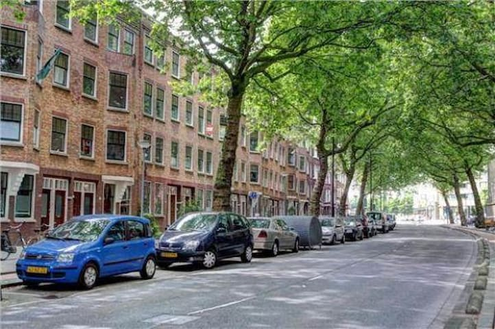 One of the most beautiful lanes of Rotterdam
