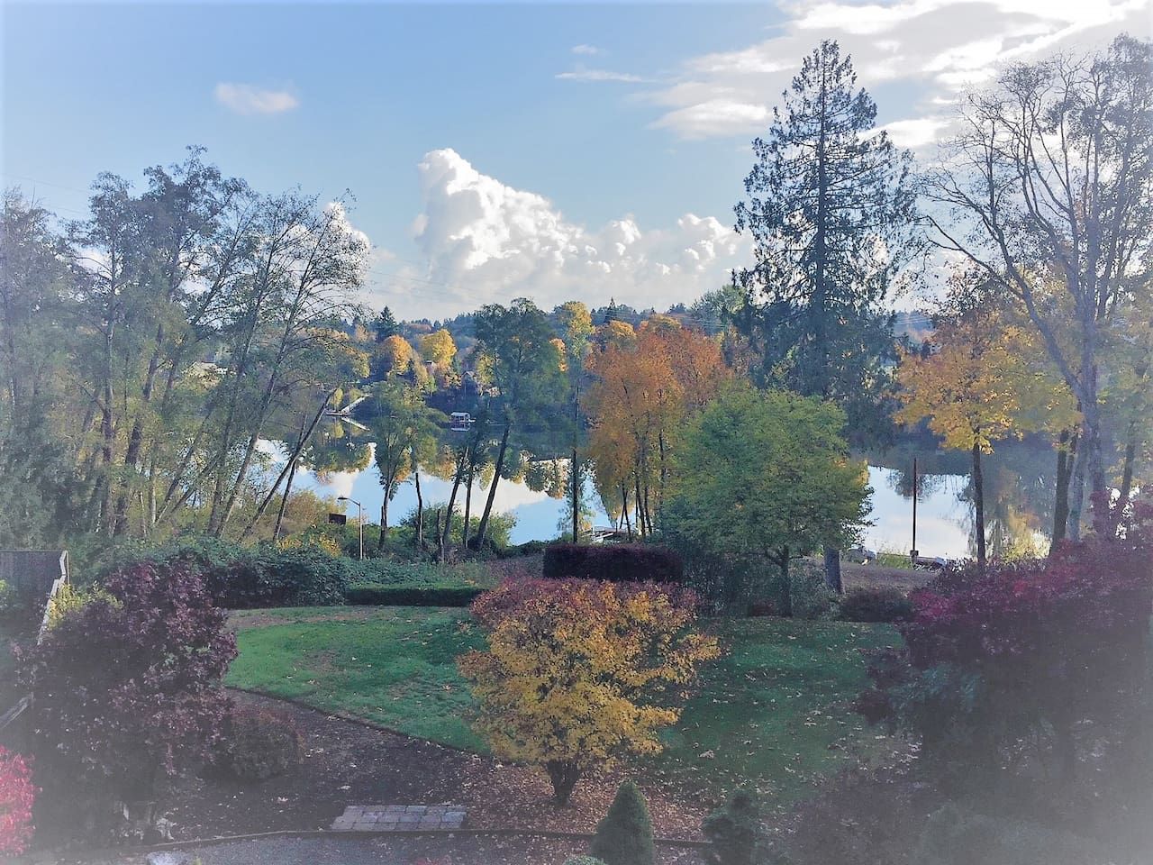 Fall 2018 River view