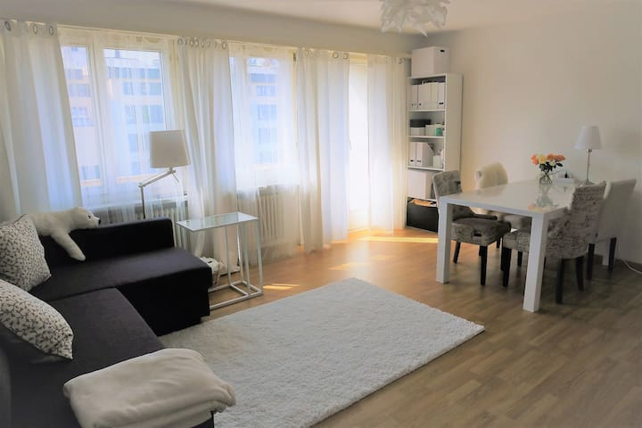 Cozy apartment - Brugg - Appartement