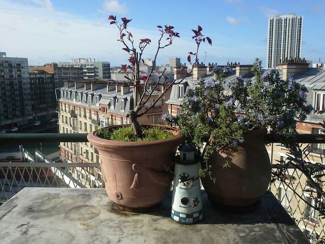 Paris vue du toit