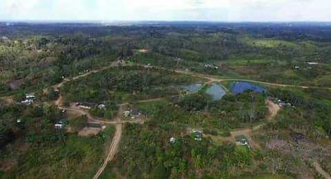 Aldeia Indigena Pinuya