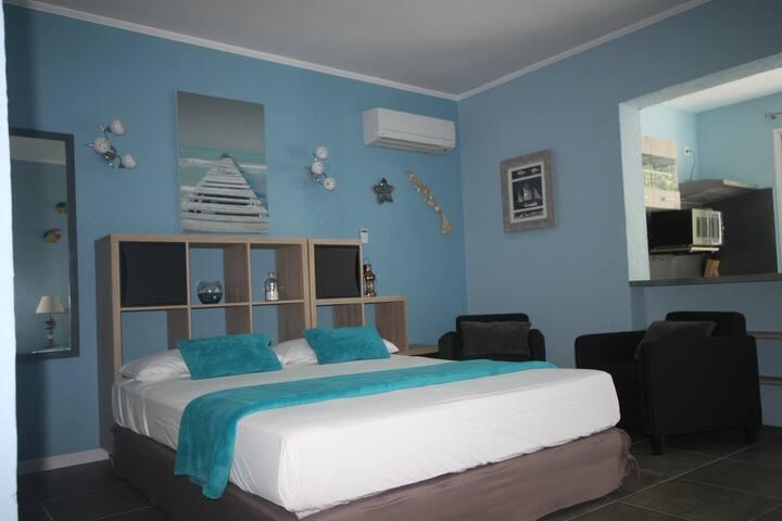 Appart BleuAzur T1  lit queen size,plage,piscine. - Saint-Florent - Apartment