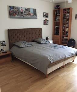 Chambre lit 160 tv et salle de bain - Bry-sur-Marne