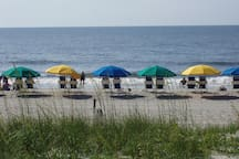 Myrtle Beach is one of the cleanest and most beautiful beaches in the world.