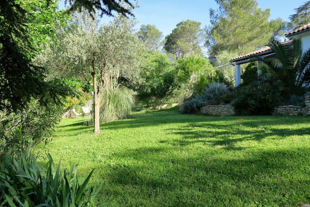 Le jardin, celui de devant la maison