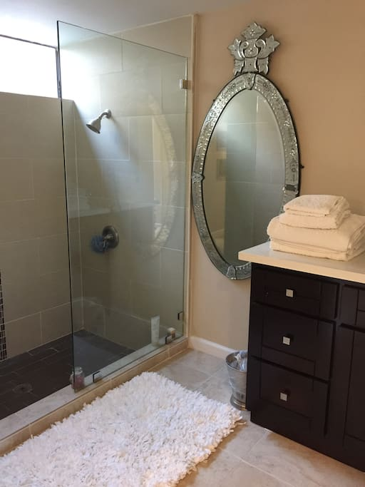 Bathroom with show and two double vanity sink