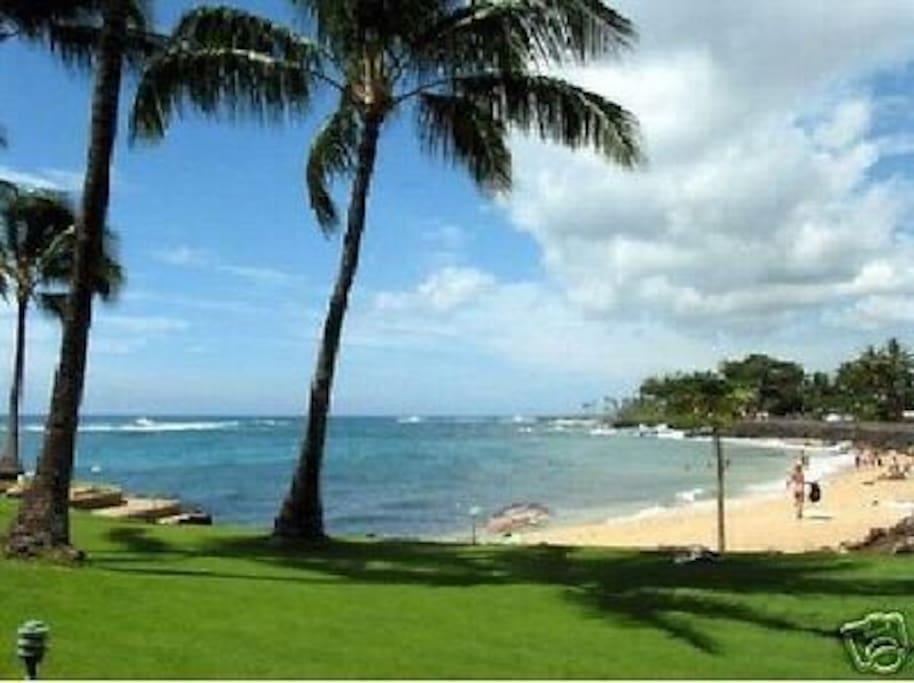 Beach from restaurant grounds