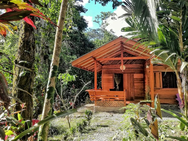 Casa Lirio - rainforest home with park garden