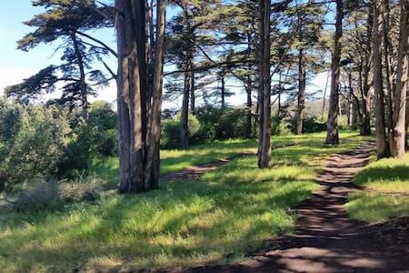 Walk to Golden Gate Park & Beach!