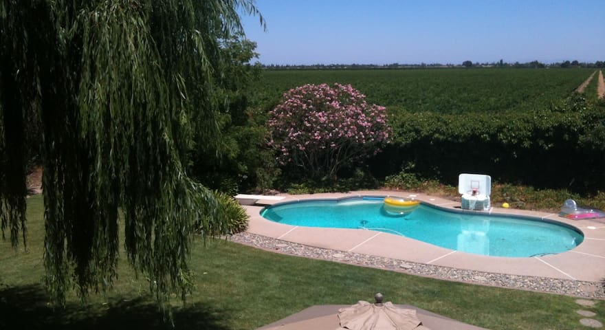 Vineyard Charm Close to Town private bath - Lodi - Huis