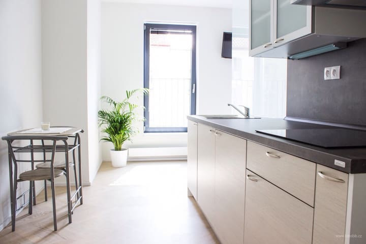 Modern Home, 10min City Centre, Safe Parking - Praha 3 - Žižkov - Lejlighed
