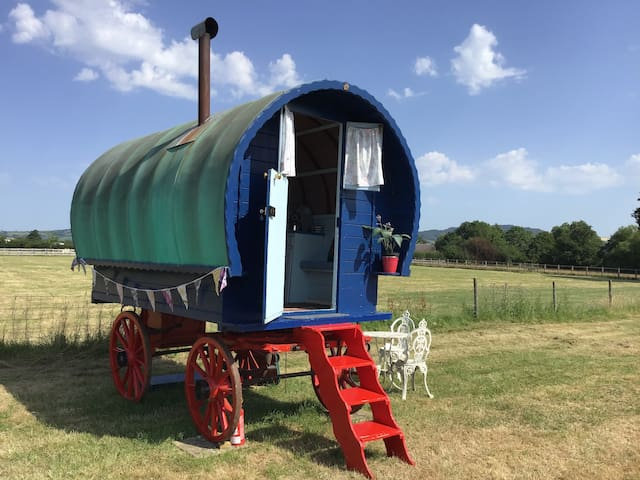 Forget-me-not Gypsy Wagon