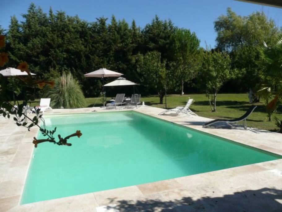 Piscine / Pool