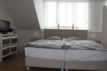 Loft with facilities - IJsselstein - Loteng