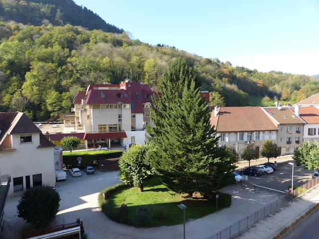Confortable T3 en Franche-Comté - Salins-les-Bains - Apartament