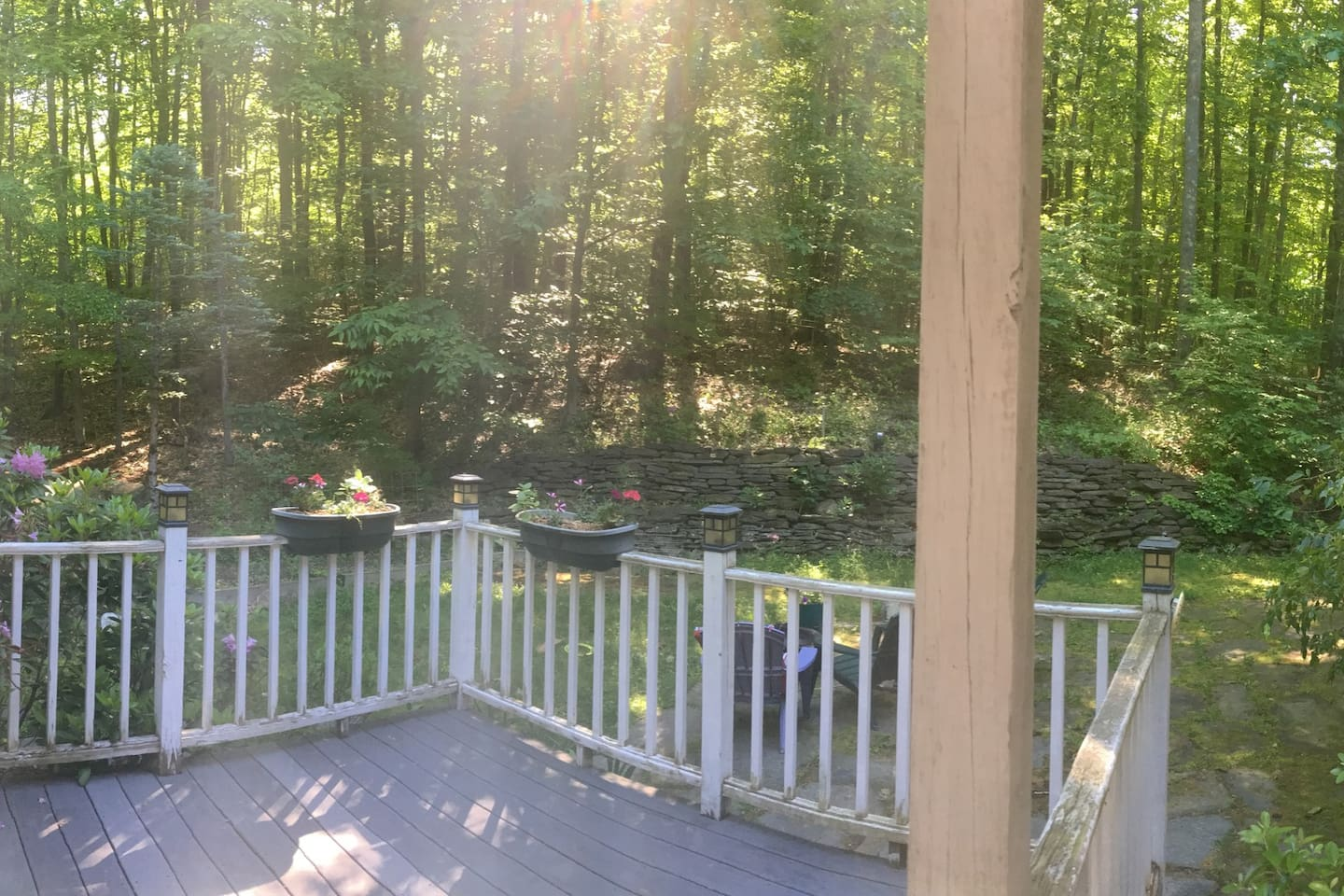 View of deck and backyard
