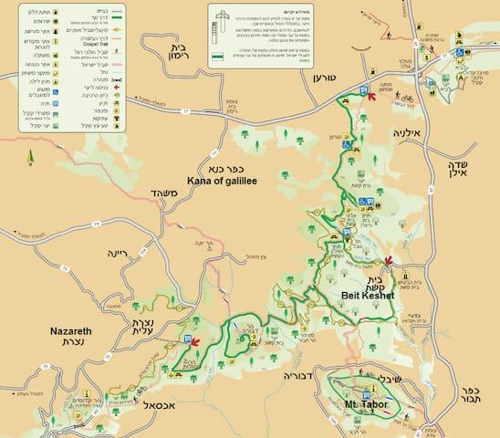"""the """"Beit keshet forest"""" Map"""
