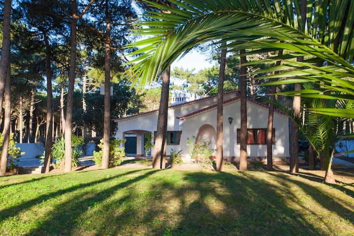Pine Tree Garden House at Azenhas do Mar.