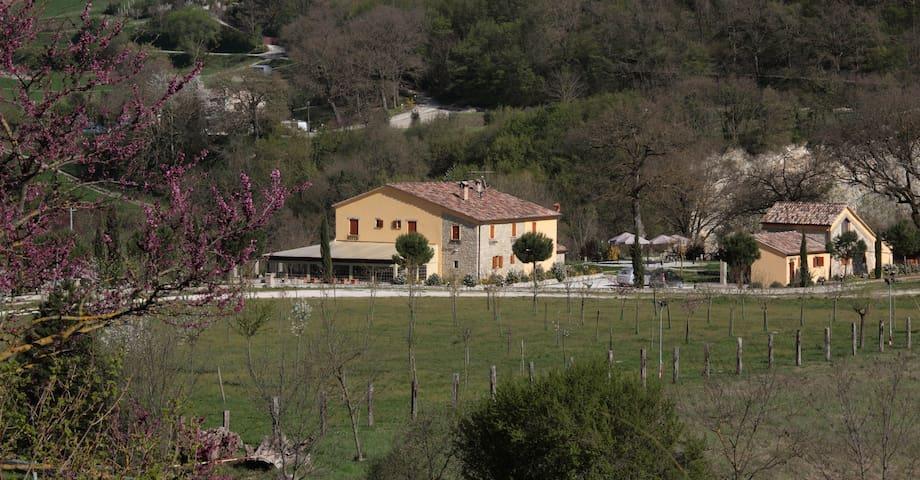 Villa Relais Olea - Fermignano - Villa