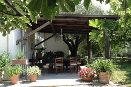 Accogliente camera Bb Trecentolivi - Senigallia - Bed & Breakfast
