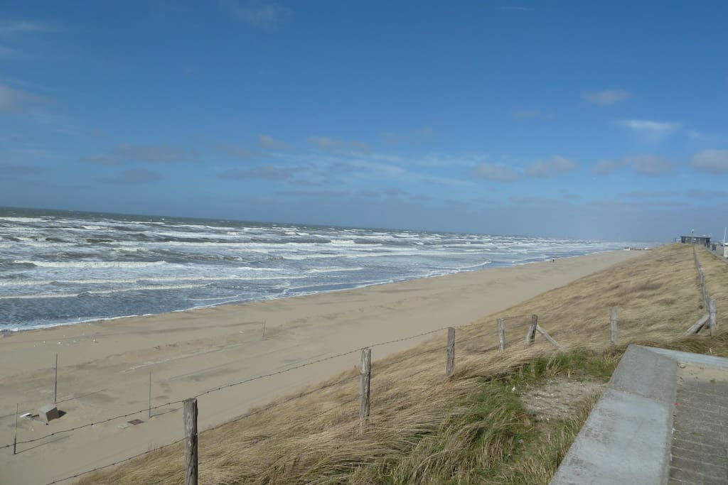 Seaside and its beaches of Zandvoort and Bloemendaal, national park (dunes) for hiking and cycling.