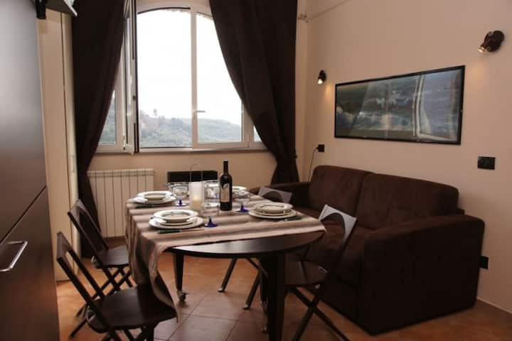 La piccola Navetta. Idyllic, located on a quiet slope within an olive-grove Well furnished apartment
