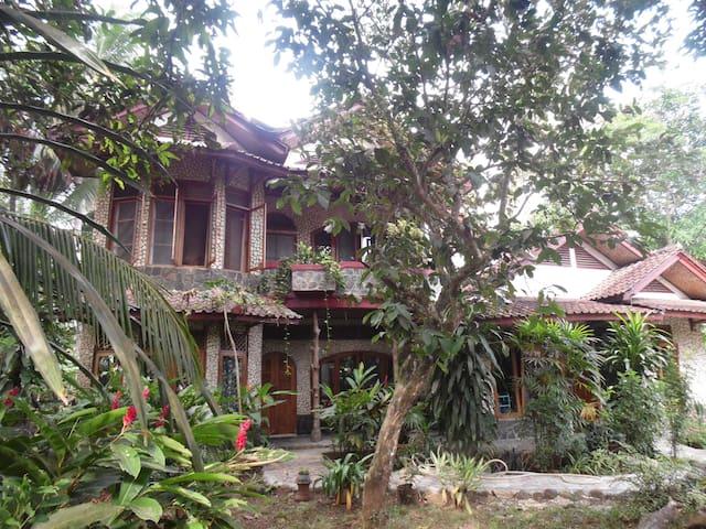 Little Jungle Villa