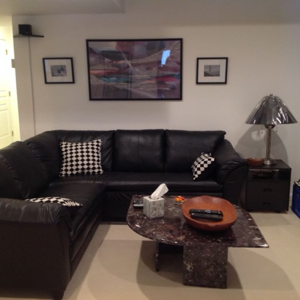 Leather Sectional (not a sleeper) in Living Room